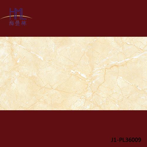 J1-PL36009