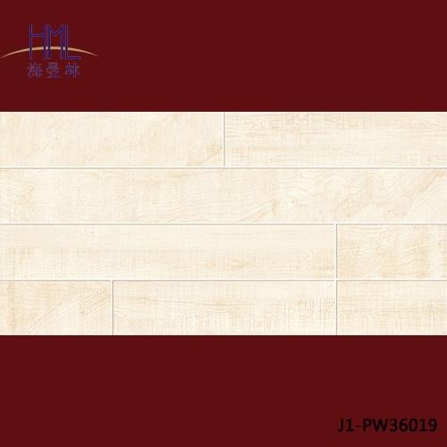 J1-PW36019